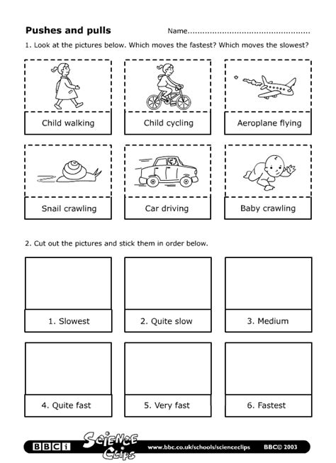 SCIENCE YEAR 2: Worksheets